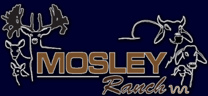Mosley Ranch